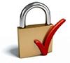 sop-resize-200-lock-secure-website